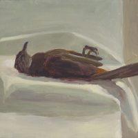 Catbird, no. 1