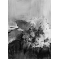 Hydrangea, no. 2, 2010