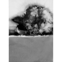 Hydrangea, no. 3, 2010