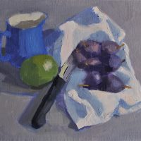 Figs Grey Cloth, 041016