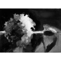 Hydrangea, no. 5, 2010