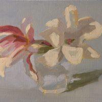 Magnolia, 042308