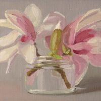 Magnolia, 042808