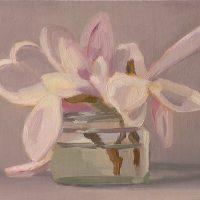 Magnolia, 042908