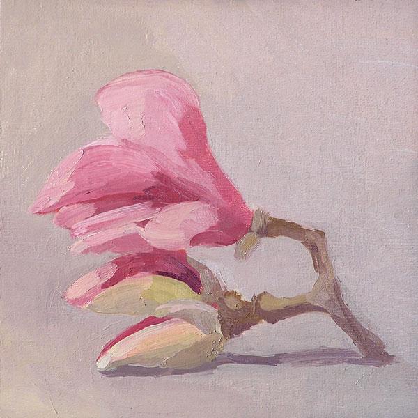 magnolia_041808_wb