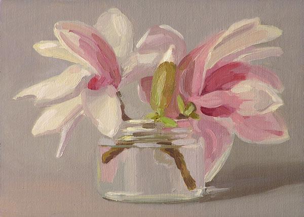 042908_magnolia_wb