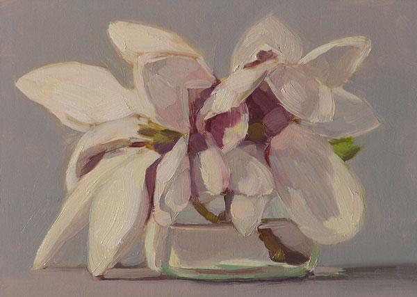 050508_magnolia_wb
