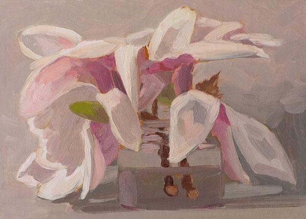 050608_magnolia_wb