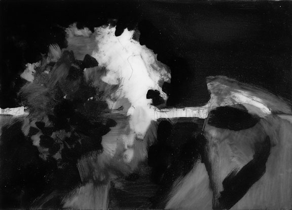 072710 hydrangea no. 5; graphite on mylar
