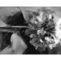 Hydrangea, no. 1, 2010