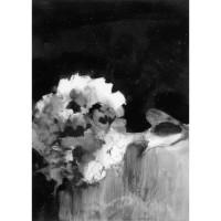 Hydrangea, no. 4, 2010
