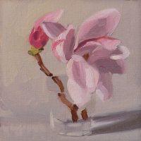 Magnolia, 042108