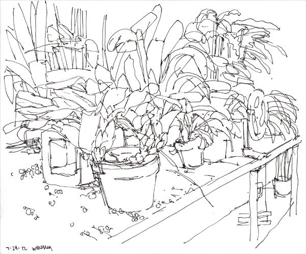 072912_greenhouse